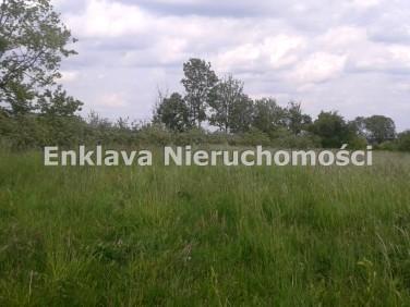 Działka Łęgajny