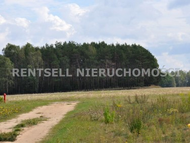 Działka budowlano-rolna Florentynów