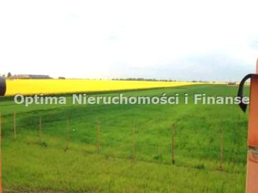 Działka Nieborowice