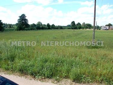 Działka budowlano-rolna Wielki Sosnowiec