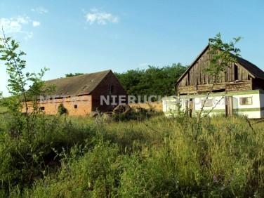 Działka siedliskowa Ludwikowo