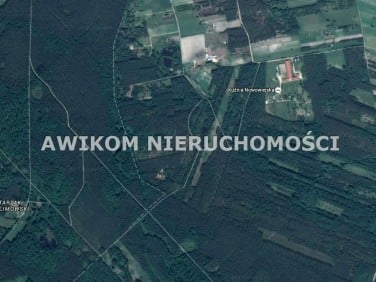 Działka leśna Nowa Wieś
