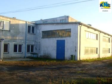 Budynek użytkowy Siedlce