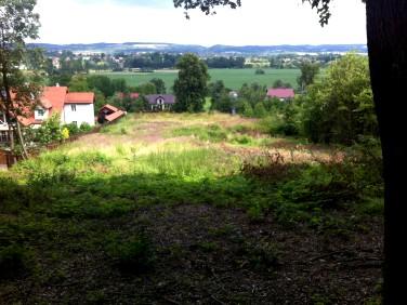 Działka budowlana Kochanów