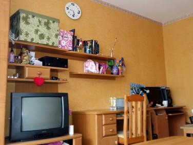 Pokój do wynajęcia Toruń