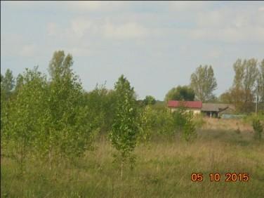Działka budowlano-rolna Puszcza Mariańska
