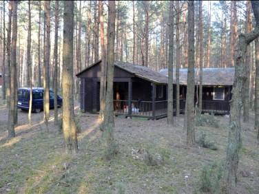 Dom Łosie sprzedaż