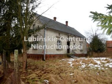 Dom Buczynka