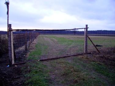 Działka rolno-leśna Radawa
