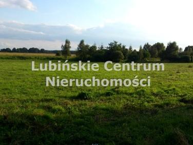 Działka budowlano-rolna Chocianowiec
