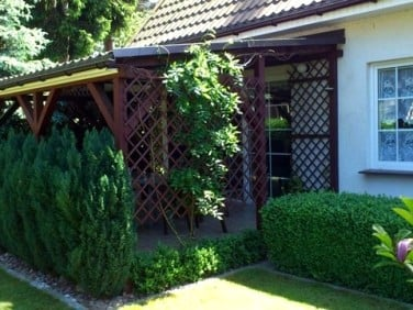 Dom Kobylanka sprzedaż