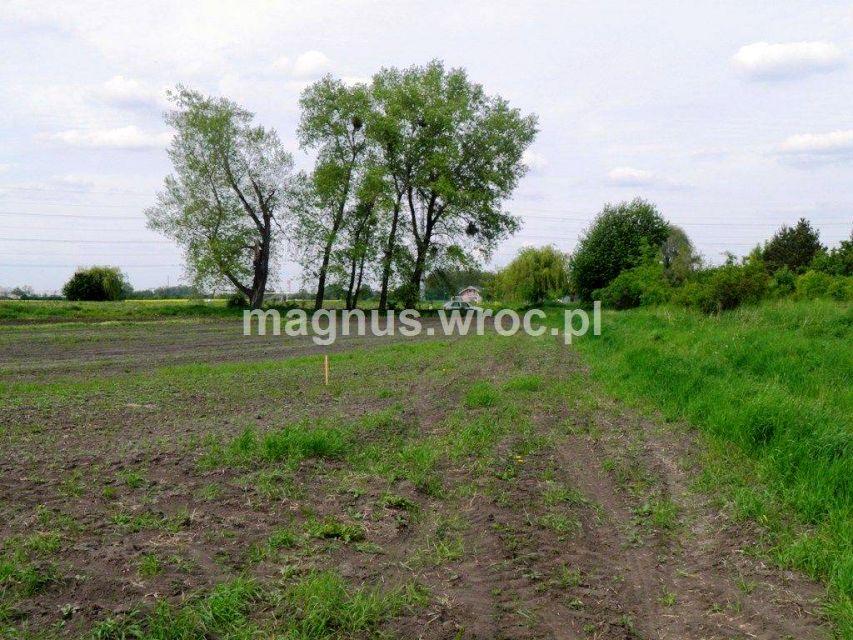 Działka budowlana Domasław