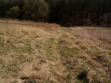 Działka rolna Minoga