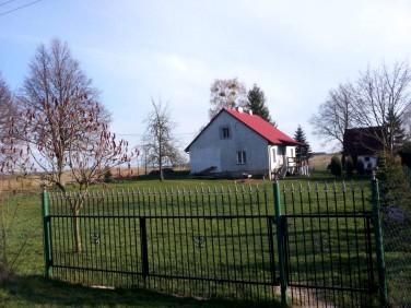 Dom Brajniki