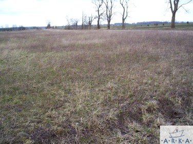 Działka rolna Bobolin