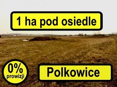 Działka budowlana Polkowice sprzedam