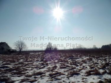 Działka budowlano-rolna Brzegi