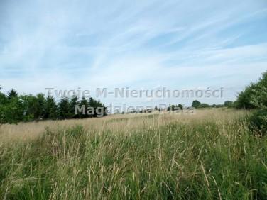 Działka budowlano-rolna Wola Batorska