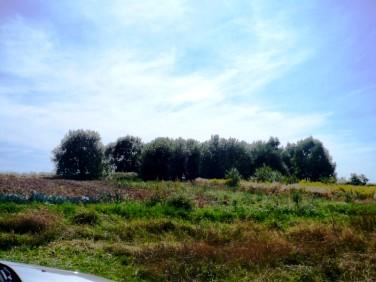 Działka rolna Paczółtowice