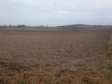 Działka rolna Boniewo