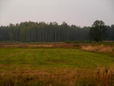 Działka rolna Ludwinów