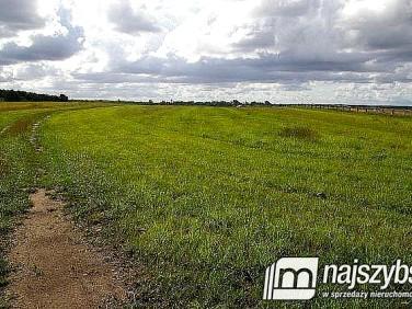 Działka rolna Maszewo