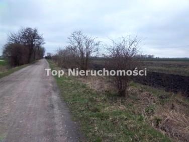 Działka budowlano-rolna Pogroszew-Kolonia