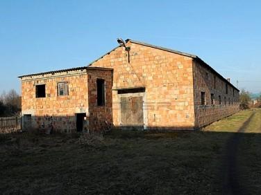 Budynek użytkowy Brzozowiec