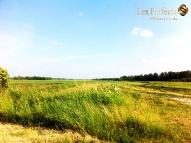 Działka rolna Nałęczów