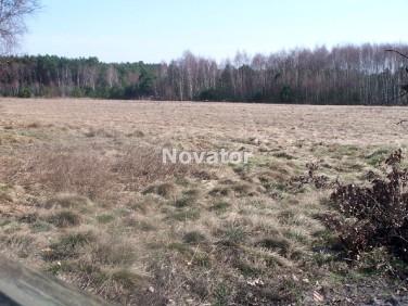 Działka rolna Przyłęki