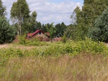 Dom Miedniewice