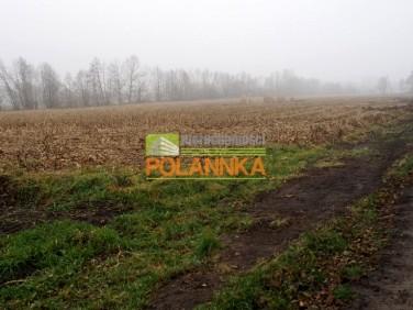 Działka budowlana Górsk