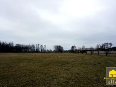 Działka rekreacyjna Łąkie