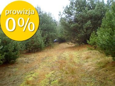 Działka siedliskowa Stara Kiszewa