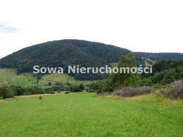 Działka Łomnica