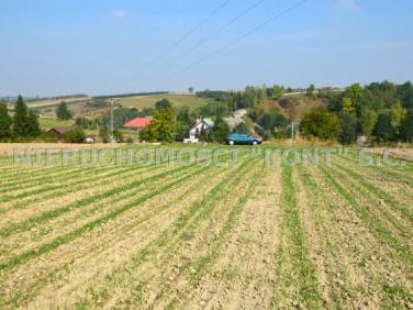 Działka rolna Cianowice Duże