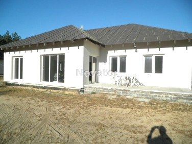 Dom Szubin