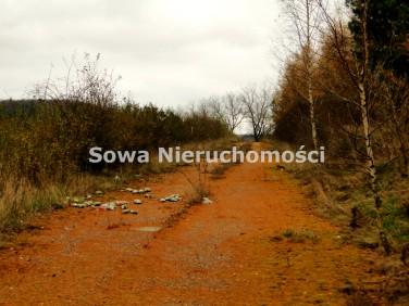 Działka Chwaliszów