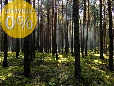 Działka leśna Rostki Wielkie