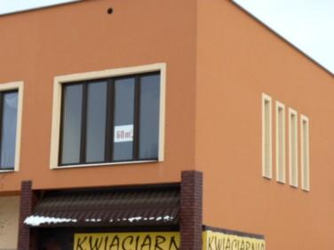 Lokal Mosina