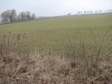 Działka rolna Janikowo