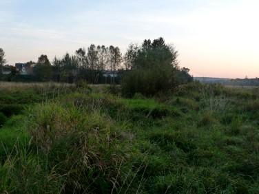 Działka budowlana Kielce