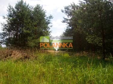 Działka siedliskowa Pruska Łąka