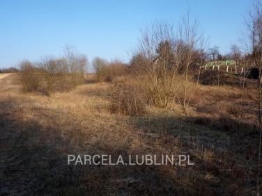 Działka siedliskowa Lublin