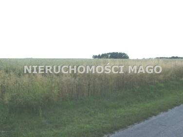 Działka rolna Olesno