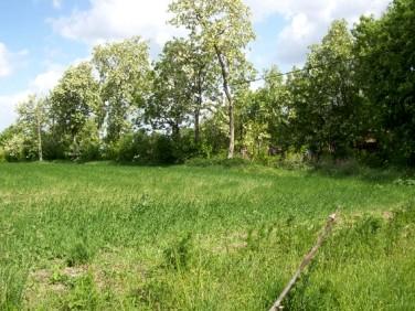 Działka rolna Wardyń