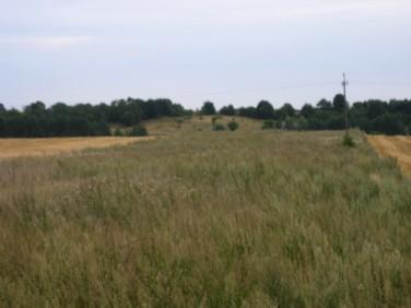 Działka rolna Zieleniewo