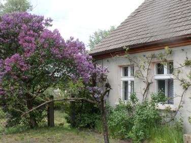 Dom Obrzycko