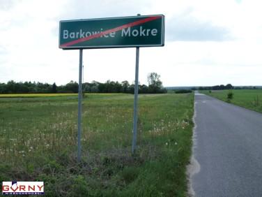 Działka Barkowice Mokre