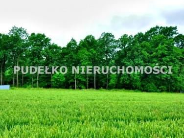 Działka inwestycyjna Goczałkowice-Zdrój